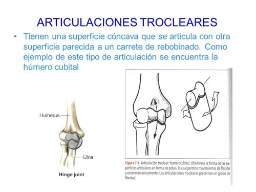 Diapositiva9.JPG